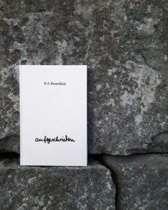 """das helle Buch """"aufgeschrieben"""" mit schwarzer Schrift vor einer Steinmauer"""